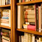 Conheça agora 6 Livrarias para visitar na América