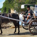 Indonésia: a história de uma biblioteca que viaja a cavalo