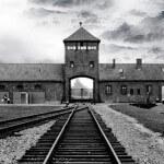 6 livros essenciais para entender o terror do Holocausto