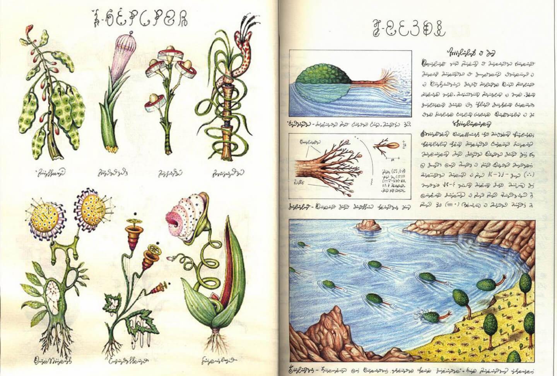 codex-um