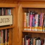 O crescimento do género literário Young Adult