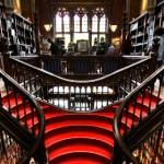 Lello: a livraria mais bela do mundo celebra 110 anos